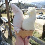 【岡山グルメ】安富牧場ファミーユ☆足守の人気ジェラート屋さん