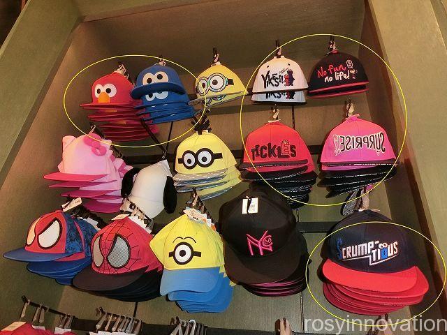 セサミの帽子1