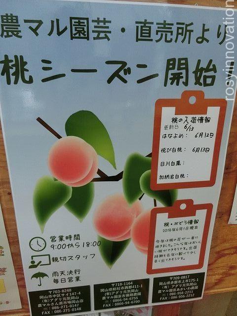 農園ビュッフェれんげ畑20 桃直売所