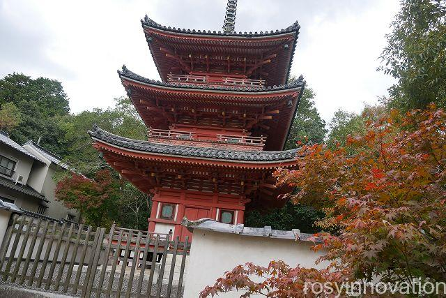 宝福寺8 三重塔
