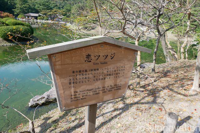 栗林公園11 恋ツツジ