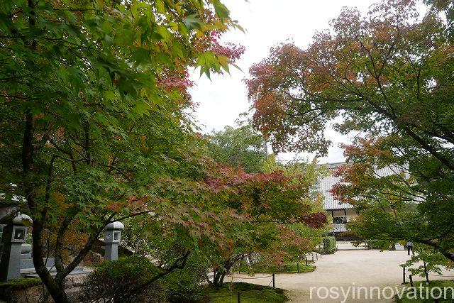 宝福寺22 紅葉の時期