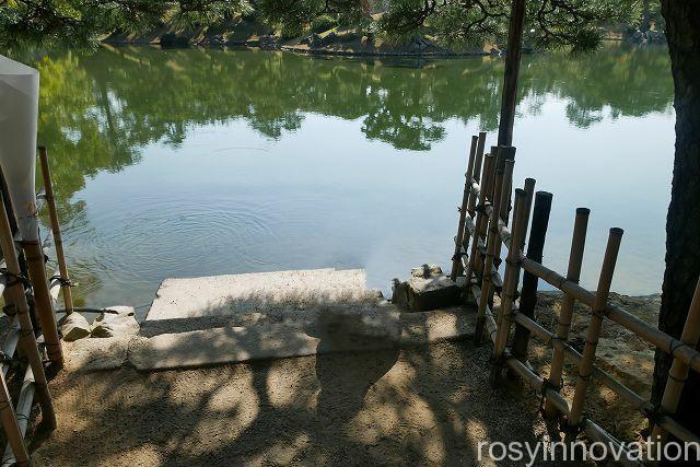 栗林公園4 鯉
