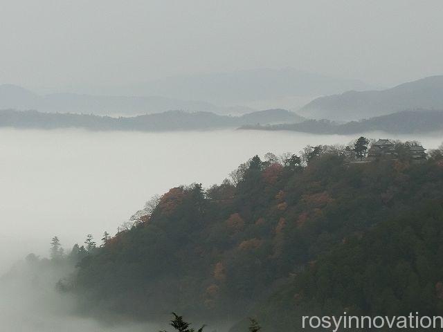 紹介 備中松山城雲海11 雲に浮かぶ