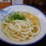 【香川うどん】手打麺や大島☆高松の美味おすすめセルフうどん店