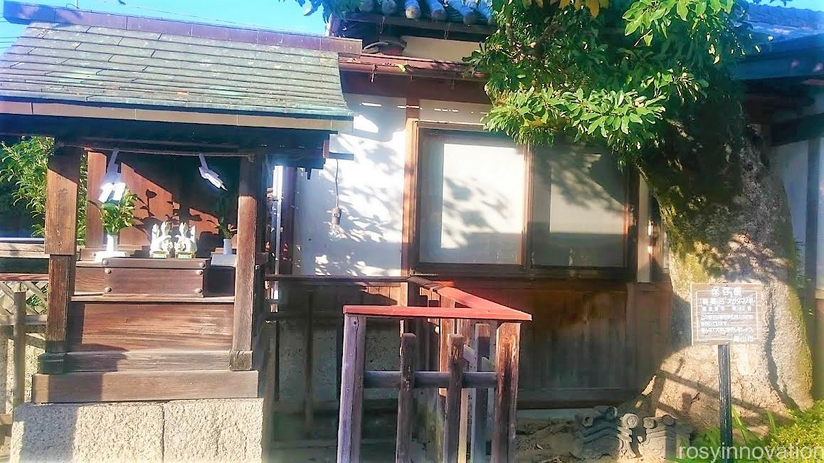 伊勢神社9 保存樹