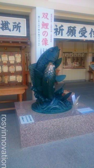 広島護国神社7 鯉