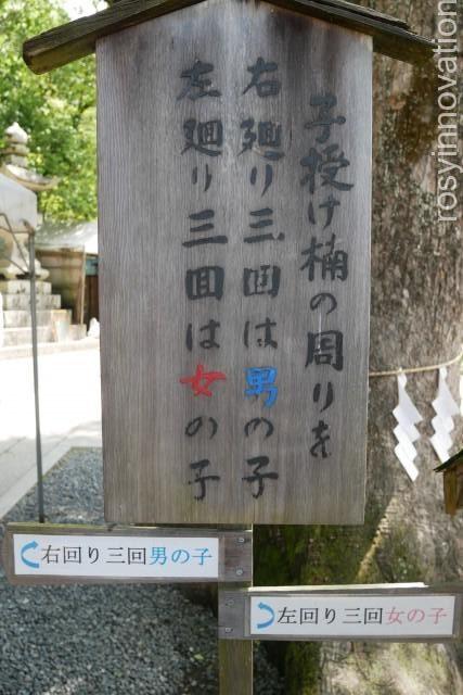 由加神社17 男の子、女の子 産み分け
