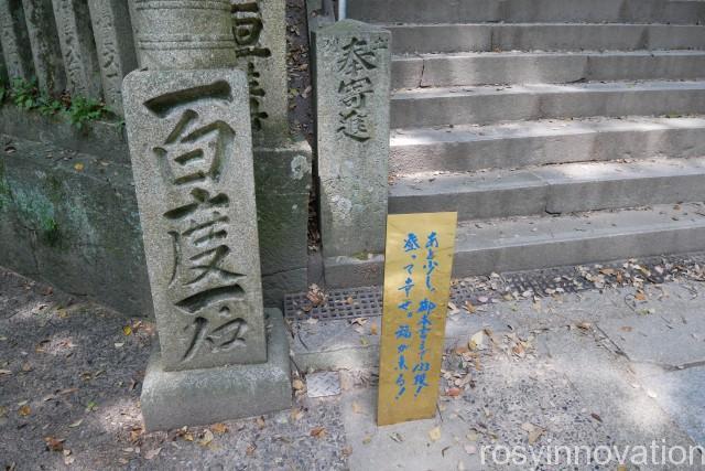 金刀比羅宮19 階段何段