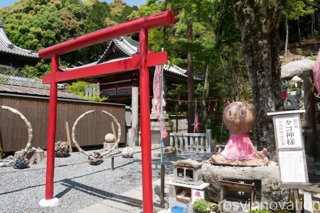 由加神社14 たこ神社