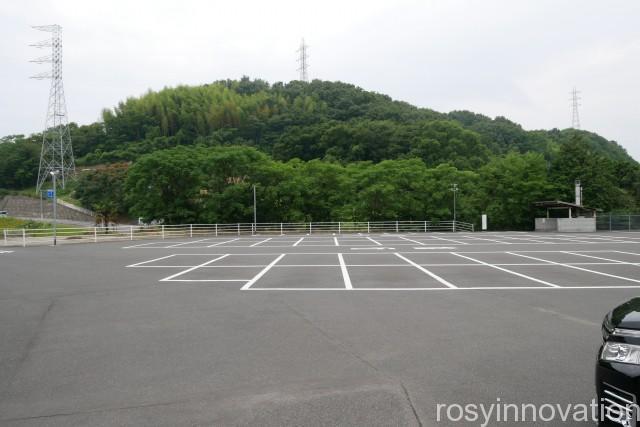 道通神社 (1)車