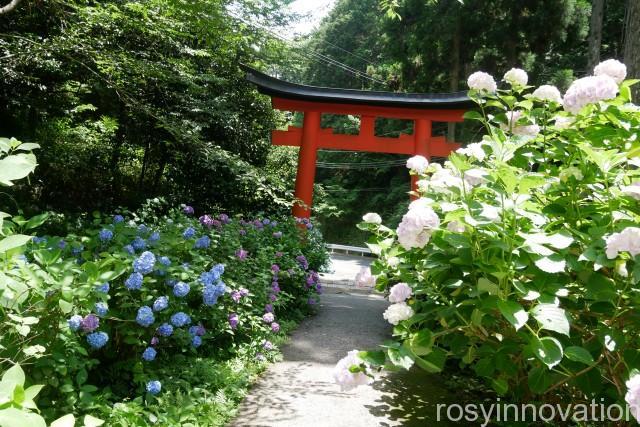 木山神社 (1)