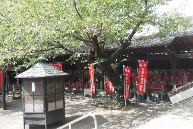 大雲寺 (5)