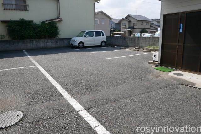 杏(あんず) (2)車