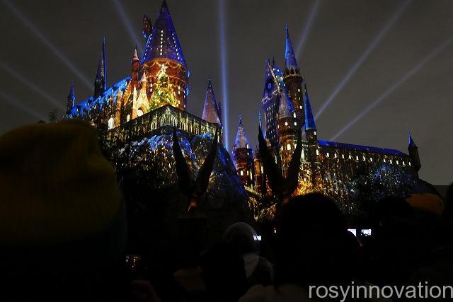 ハリーポッター マジカルナイト キャッスルショー2019冬 (3)