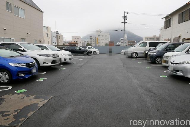 さか枝 (3)車