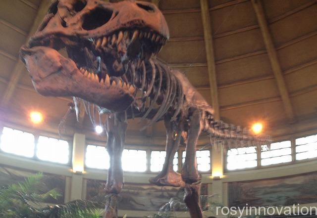 USJ×ドラえもんフードレストラン (3)恐竜 ディスカバリーレストラン