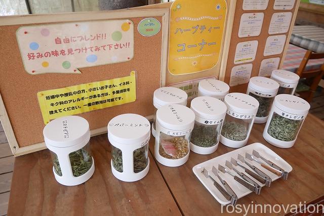 ばんごーの (12)紅茶