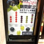【USJ】ストロベリーフェチ☆パークフロントホテル3Fに進化系いちご飴専門店OPEN!