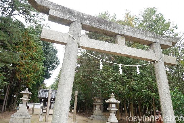 靱負(ゆきえ)神社 (3)鳥居