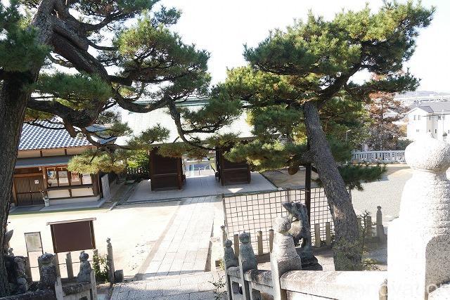 鶴崎神社 (1)境内