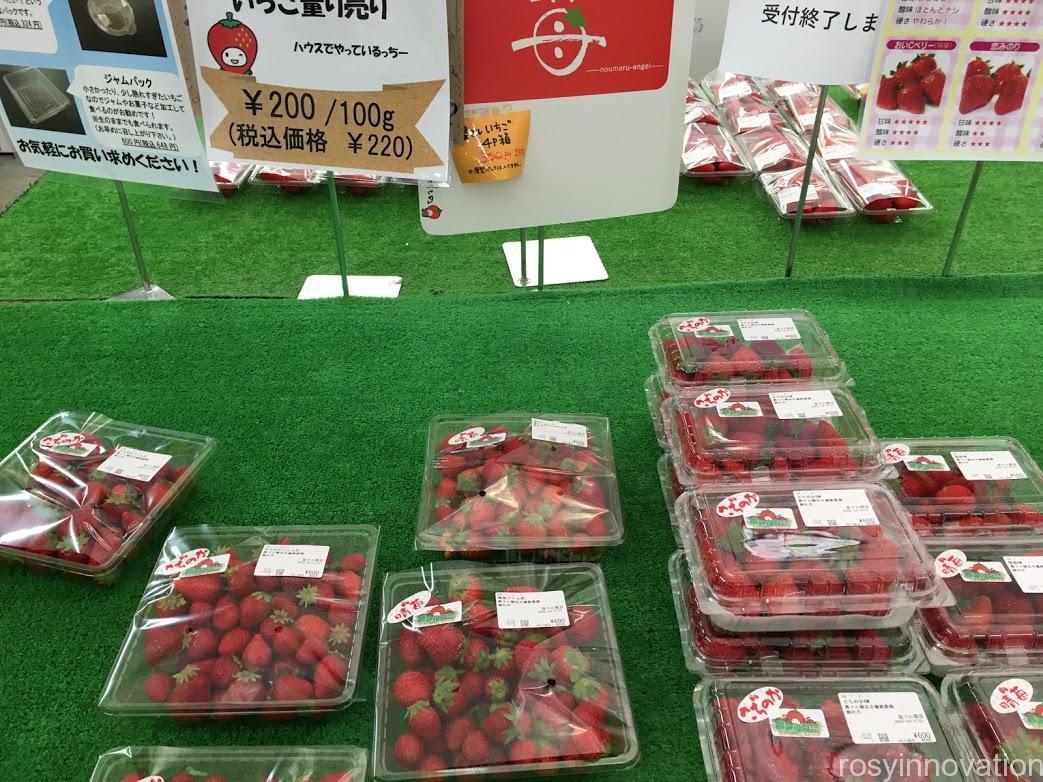 農マル園芸総社2021年春いちごフェア (2)