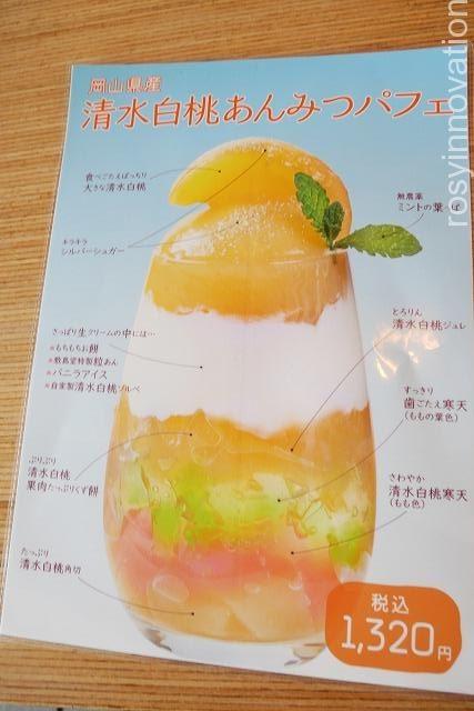 シキシマドウノカフェ平井店 (10)マンゴー